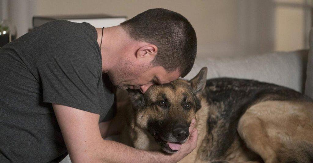 """NBC laidoje """"Kaimas"""" yra trijų kojų šuo - ko daugiau galėtų norėti žiūrovai ?!"""